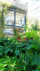 Le curieux jardin