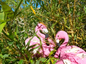 Dans les bambous 2
