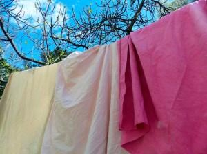 les draps teints